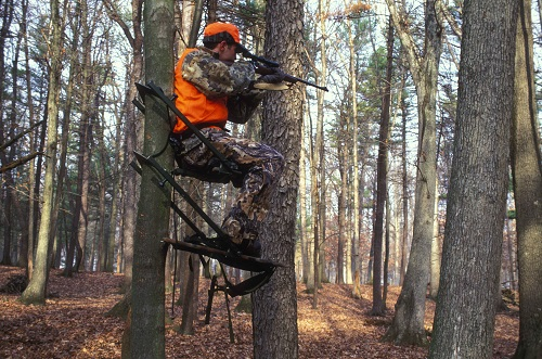 tree-stand-hunting