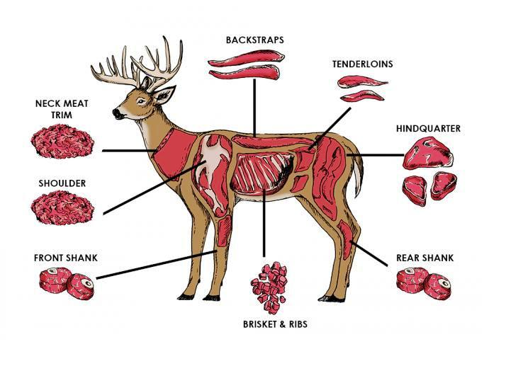 how to pick a deer processor the swift liftdo i get my own deer back?